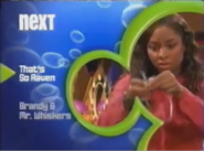 Disney Channel Bounce era - That's So Raven to Brandy & Mr. Whiskers