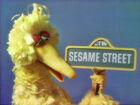 0847 Sesame sign