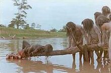 Cannibal holocaust piranha scene