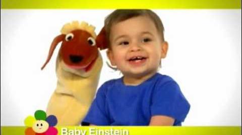Baby Einstein BabyFirst Promo