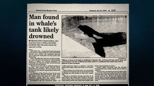 Daniel P Dukes Tilikum Newspaper Article-550x308