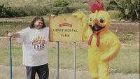 6x12 Chicken 2