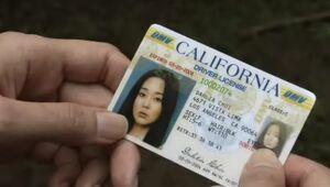 Sun driver license-0