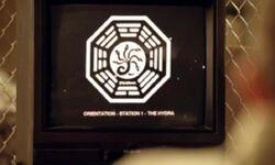 The Hydra Orientation film
