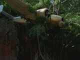 Aeroplano dei narcotrafficanti