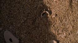 2х05 Обручальное кольцо Сун