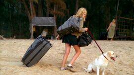Shannon Vincent bagages