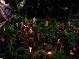 Groupes de survivants