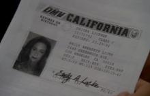 Licencia de Condicor Emily