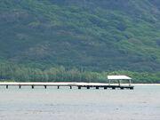 Pala Ferry