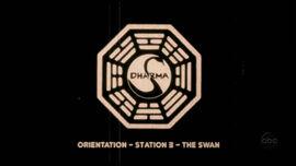 Swan orientation