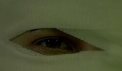 Глаз Иланы
