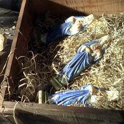 Статуэтки Девы Марии