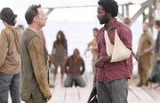 Henry Michael 2x24