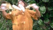 Hurley destroy 2x18