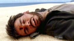 Robert morto