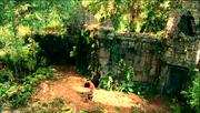 De tempel muur