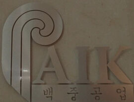 Paik logo