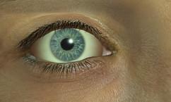 242px-Elliot's eye
