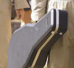 Gitar case