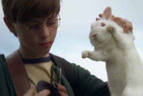 Rabbits Lostpedia Fandom Powered By Wikia