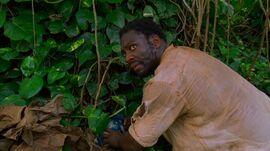 Eko jungle dynamite 2x24