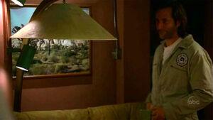 Joshua Tree 2x24