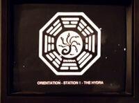 Hydra-Orientierung