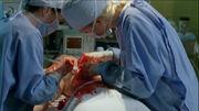 Operacja Young Ben