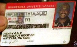 Henry Gale MN License