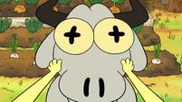Tilly's Goat (15)