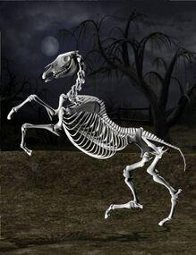 DAZ Productions - Skeleton Horse