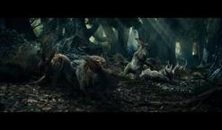 Rosgobelskie rabbits