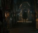 Bottommost Cellar