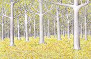 Der Goldene Wald von Lothlórien