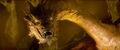 Ss hobbit-smaug-01.jpg