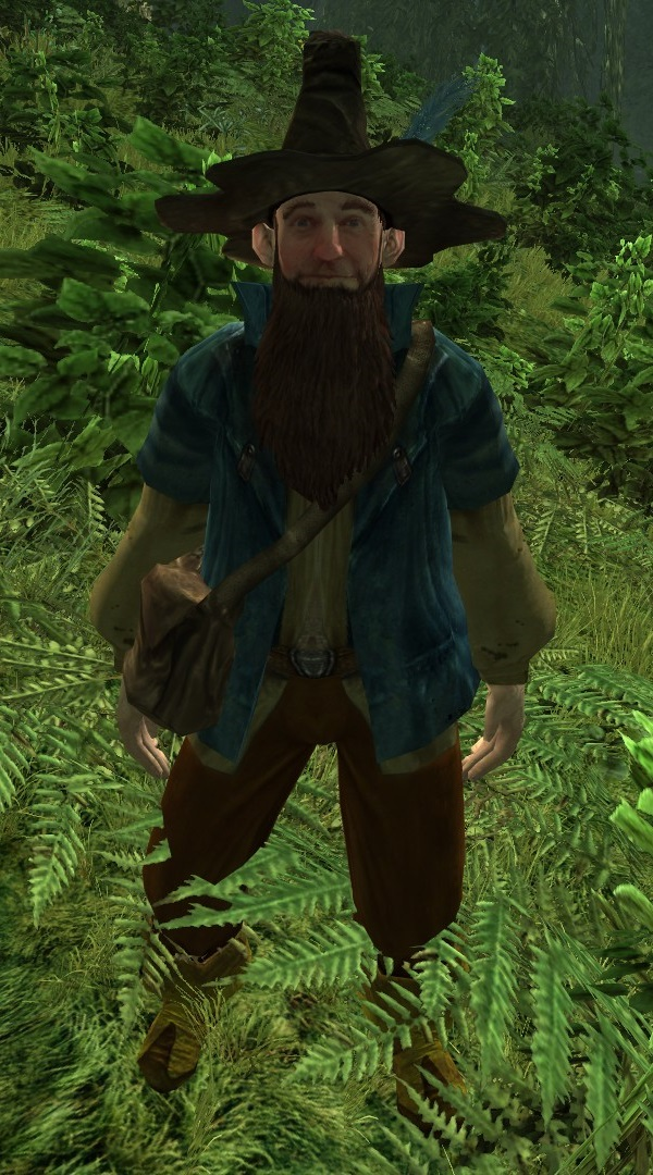 tom bombadil the one wiki to rule them all fandom powered by wikia