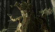 Baumbart Isengart