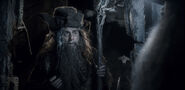 Radagast-the-brown-wizard-in-the-hobbit-the-desolation-of-smaug
