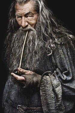 Gandalf the Grey profile