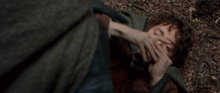Frodo Baggins attacked by Boromir