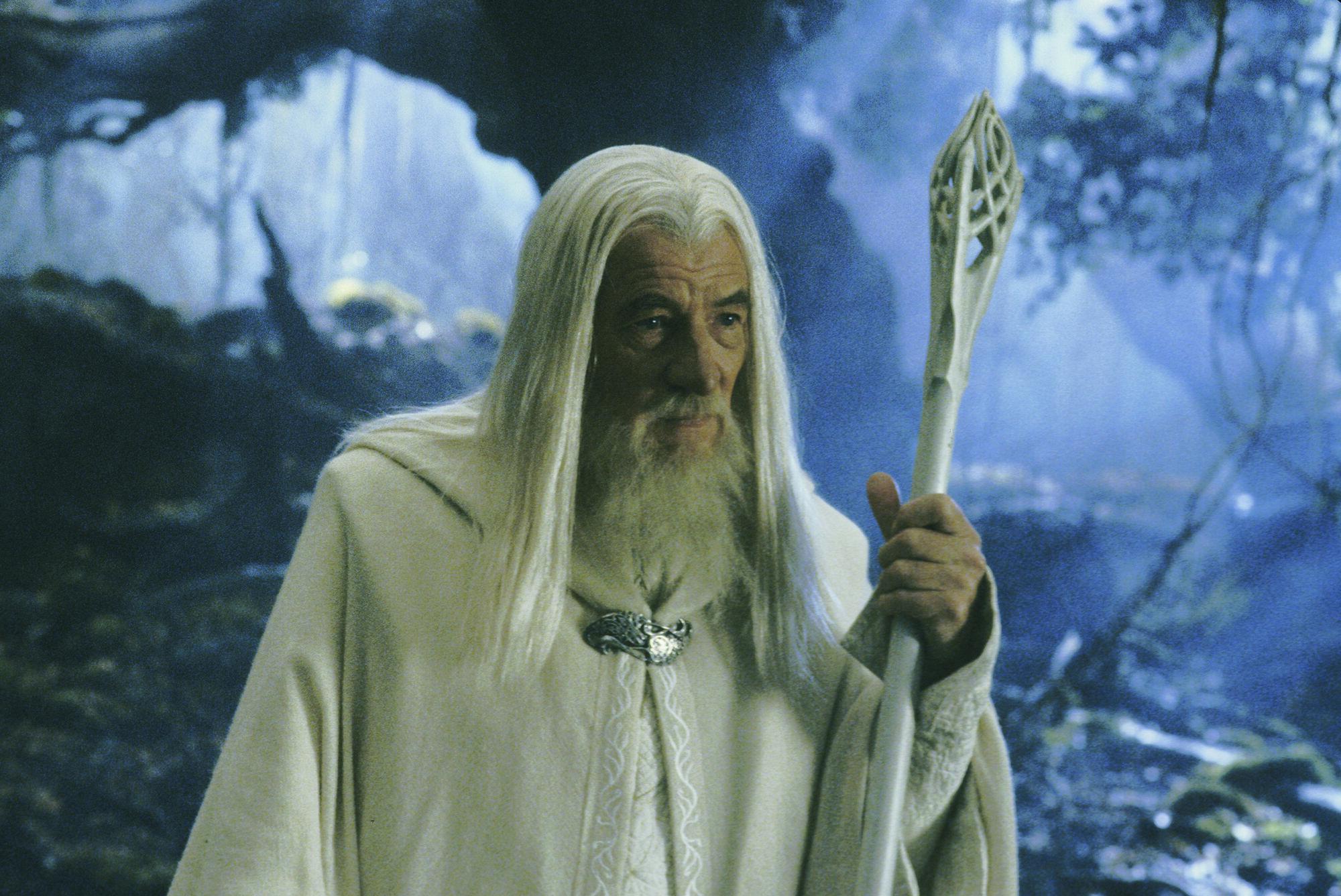 wizard staff the one wiki to rule them all fandom powered by wikia