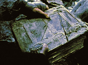 Mazarbul Buch
