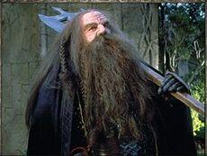Dwarfguard