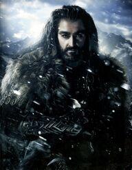 Thorin Dębowa Tarcza
