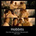 Hobbits meme.jpg