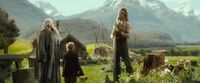 The-Hobbit-The-Desolation-Of-Smaug-Extended-Edition-Beorn
