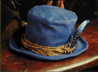 Tom Bombadil's hat