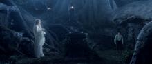 Frodo Baggins with Galadriel