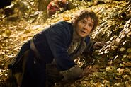 The Hobbit - The Desolation of Smaug - Bilbo in the Lonely Mountain
